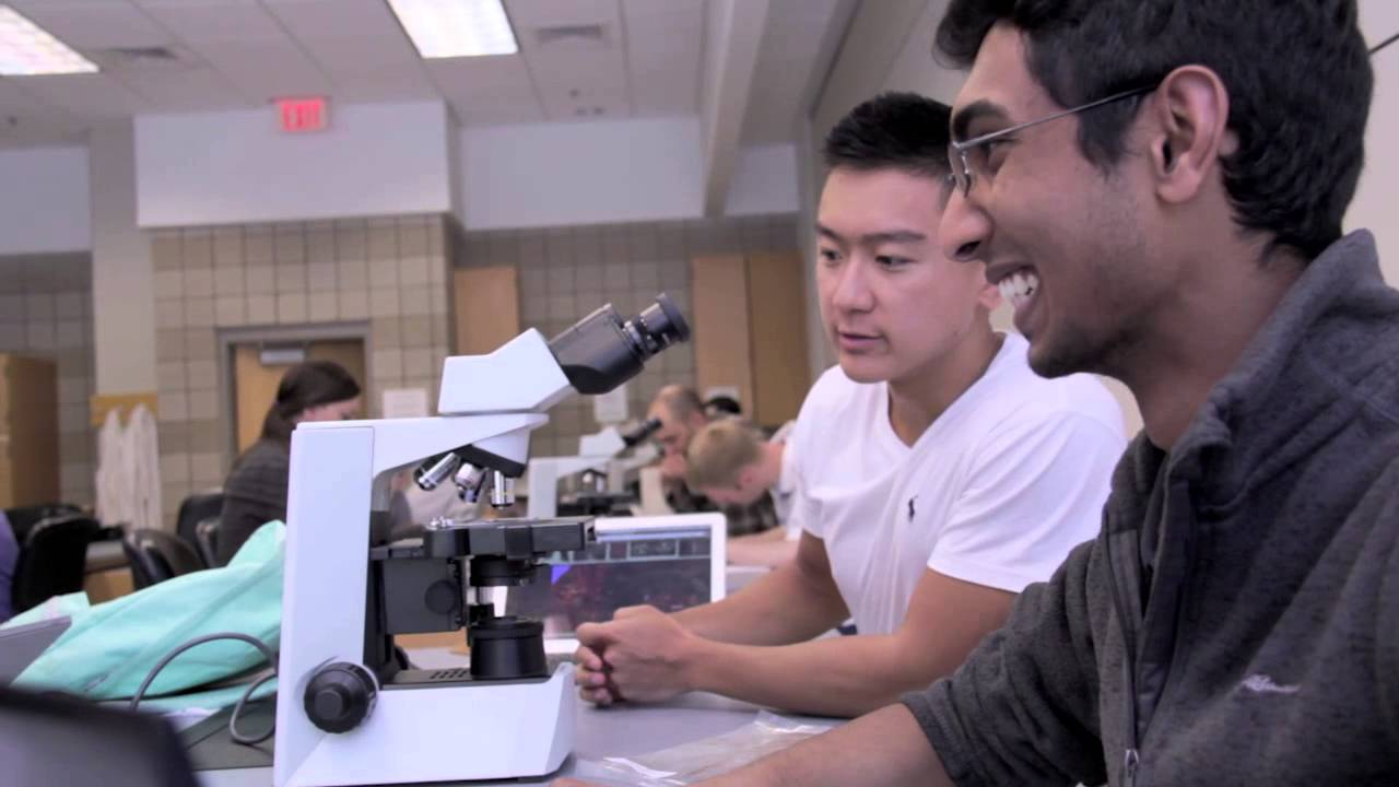 Discover Your Place at the University of Minnesota Medical School ...