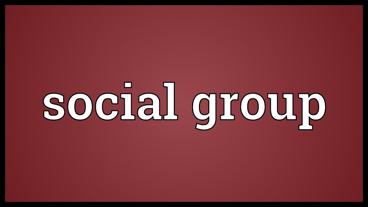 What is a social group 37