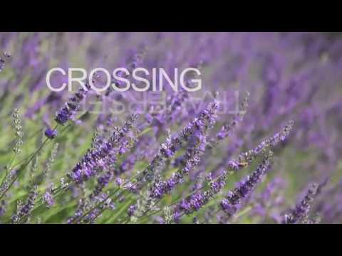 Haus Musik: Crossing / Traversée