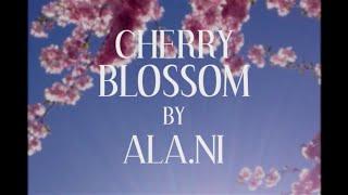 ALA.NI - Cherry Blossom