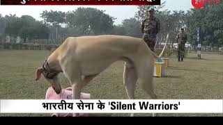 First Time Ever: Indian breed dogs become part of Indian Army