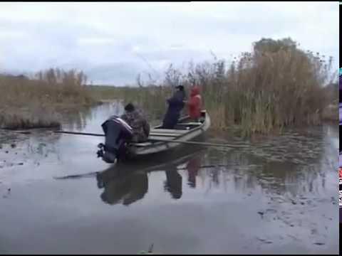 ловля щуки на малых реках с берега на джеркбейты видео
