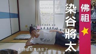 【聖☆哥傳】大銀幕限時放映場預告 11/2神來也