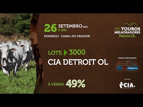 LOTE 3000 - CIA DETROIT OL - LEILÃO VIRTUAL DE TOUROS 2021 NELORE OL - CEIP