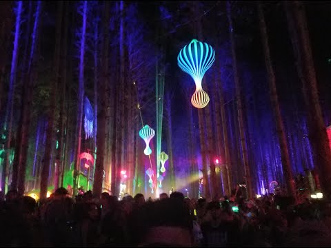 Electric Forest Music Festival 2016 After Video - Danny McDonald