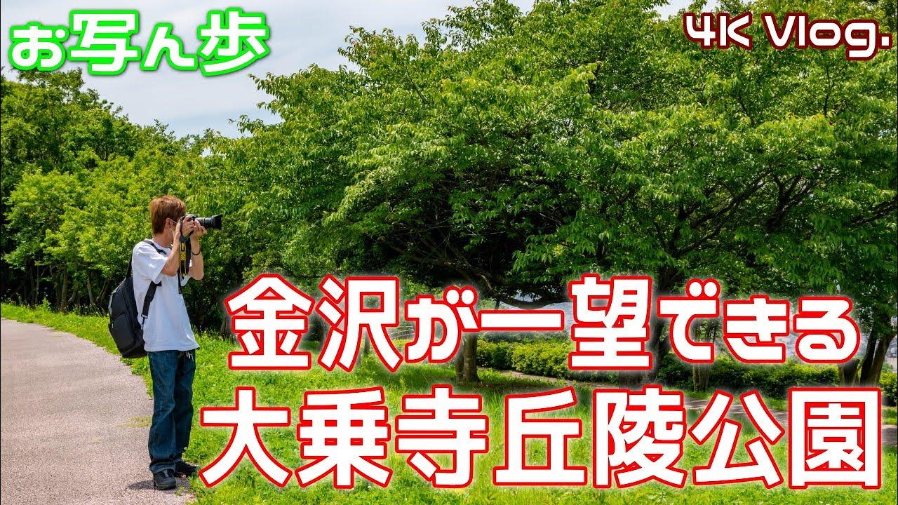 散歩がてら大乗寺丘陵公園に来てみた【Vlog.】