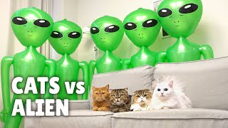 Cats vs Alien
