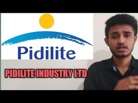 Pidilite Industry Ltd Best Stock To Buy In Market Crash Best Stock For Long Term Youtube