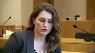 The Family Court without a Lawyer - Video 3 of 3