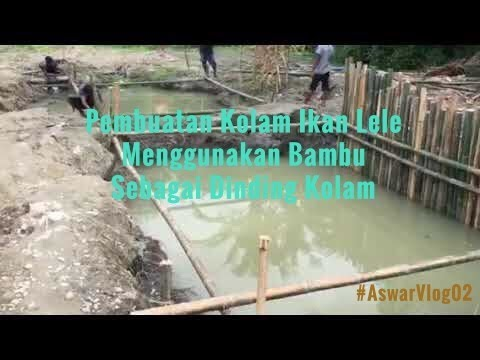 pembuatan-kolam-ikan-lele-dari-bambu-|-#aswarvlog02