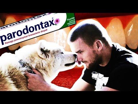AdBuster - konfrontacja Parodontax (feat. Moby!)