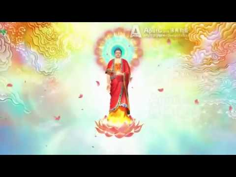 Đức Phật A Di Đà ( Đức Phật Vô Lượng thọ - Đức Phật Vô Lượng Quang )