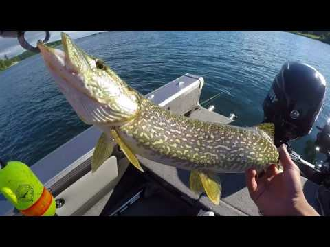 Catching BIG NORTHERN PIKE!!!! - St. Lawrence River DAY 4