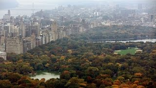 An Explosion In Central Park Severed A Man's Foot