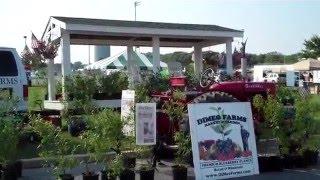 Blueberry Festival in Hammonton, New Jersey