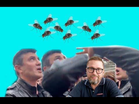 Как на слугу народа мухи-предприниматели налетели