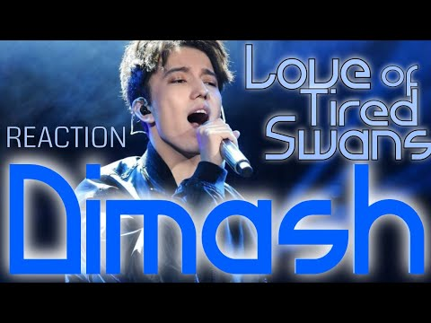 DIMASH - LOVE OF TIRED SWANS