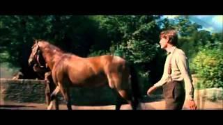 Bande Annonce - Cheval de Guerre - VF