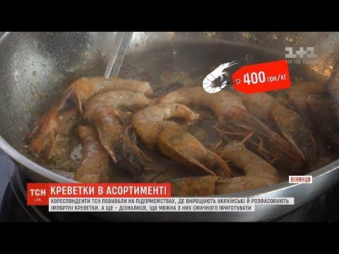 Як вирощують океанічні креветки на Київщині, і чи не купуємо ми насправді воду