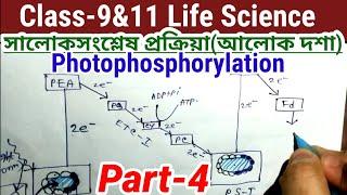 Class-9 life science Photosynthesis Part-4|| জীবন বিজ্ঞান সালোকসংশ্লেষ প্রক্রিয়া আলোক দশা ||