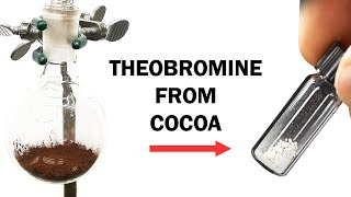 Extracting Theobromine from Cocoa
