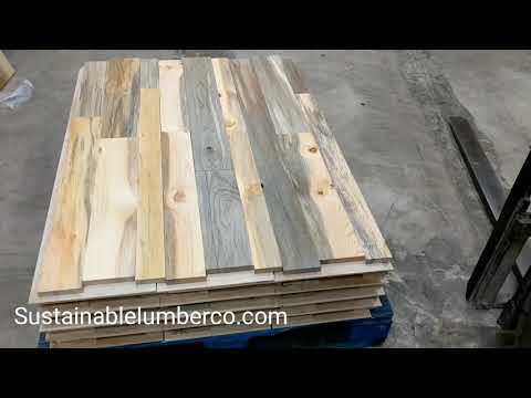 Beetle Kill Blue Pine Wall Panels