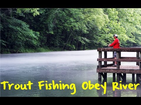 Trout Fishing Tennessee's Obey River