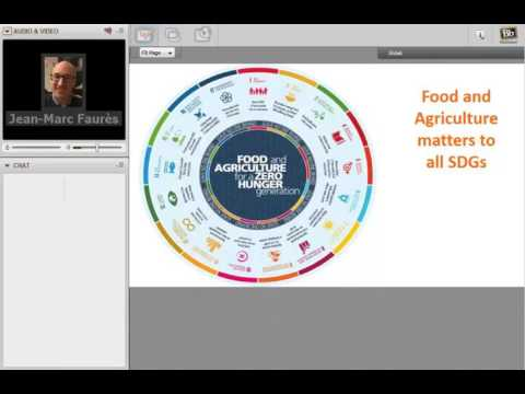 FIRST Webinar #1 - Implementing Sustainable Food and Agricul