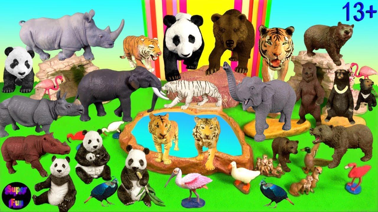 Big Cat Week - Zoo Animals - Tiger Elephant Panda Rhino Bear 13+ Chinese Animals