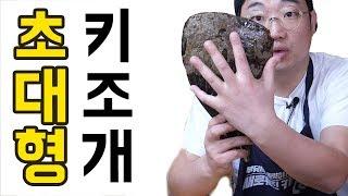 자연산 키조개를 먹어봤습니다. 관자 먹방 Mukbang…