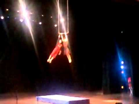 gala circus and magic