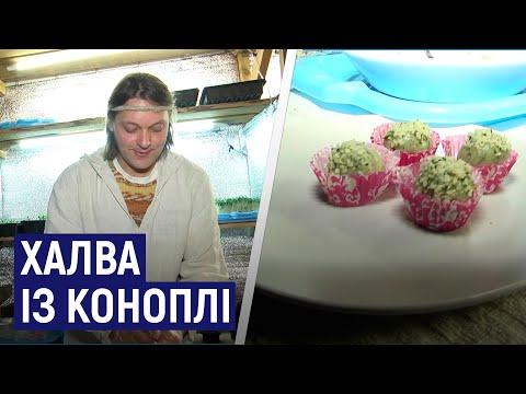 Суспільне Житомир: Житомирянин Олег Земнухов виготовляє солодощі із коноплі