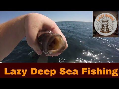 Deep Sea Fishing In Ocean City Maryland