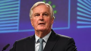 video: Barnier accused of acting like 'referee' rather 'player on the pitch'
