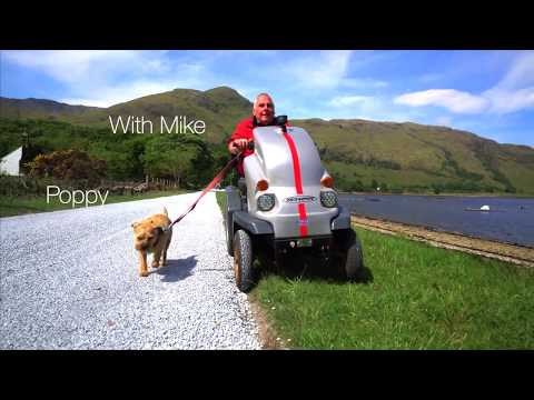 Travels and adventures with Border Terriers