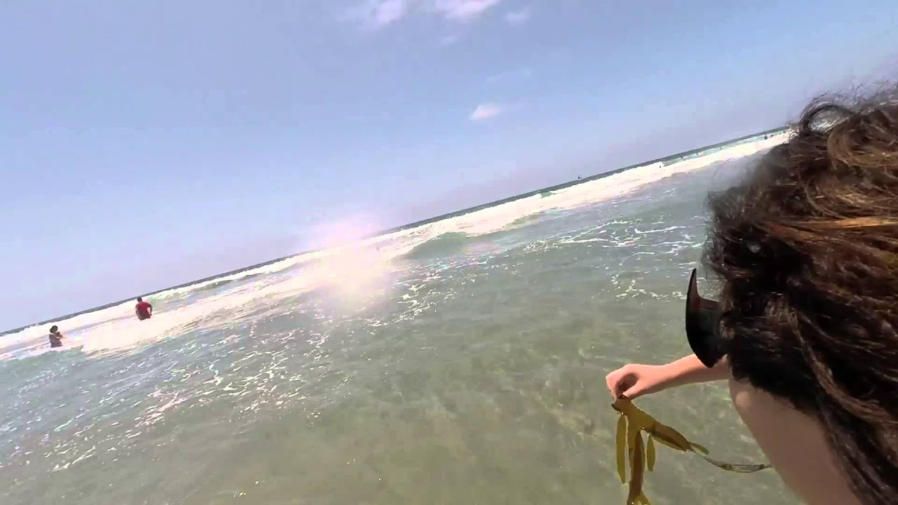 Santa Monica Beach Swimming
