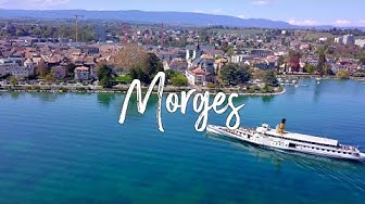 🛳🗻MORGES#DroneFootage#TheBlackSwanFlight