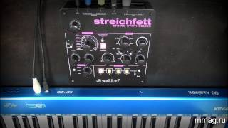 Waldorf Streichfett - стрингс синтезатор