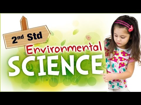 EVS For Class 2 | Learn Science For Kids | Environmental Science