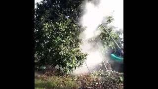 Phun vôi bột cho cây ăn trái bằng máy phun vôi sản xuât tại long an