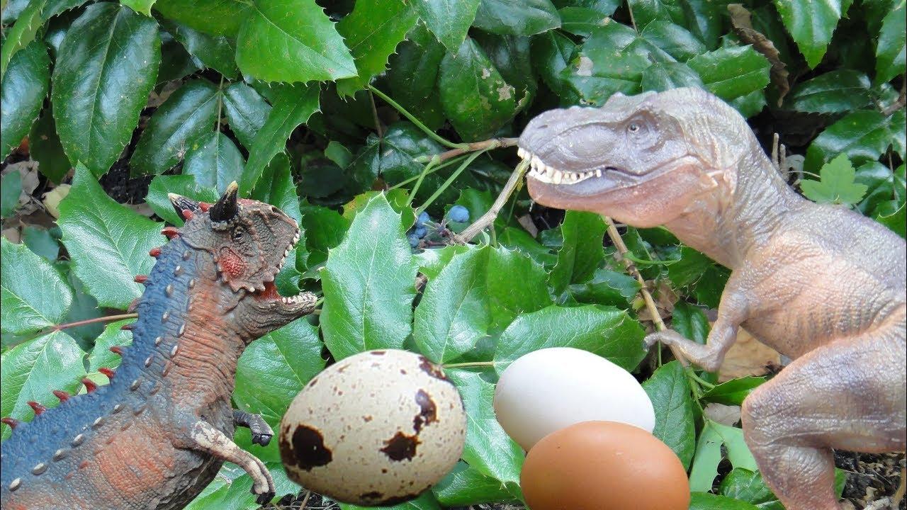 фото яйца динозавров
