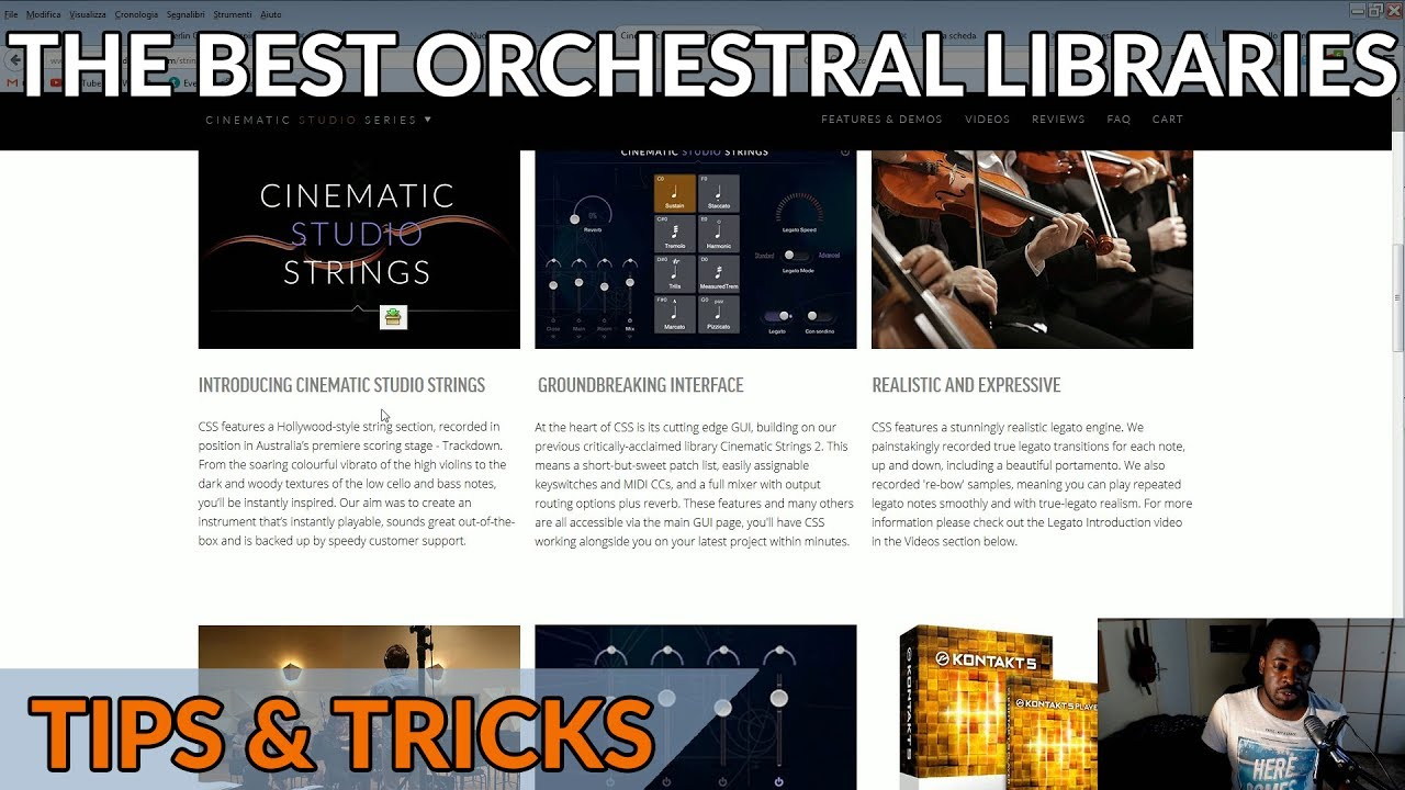 The Best Type of Orchestral Libraries to Get For Beginners