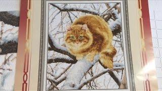 Вышивка крестиком. Рыжий кот. Золотое руно. Отчёт 6