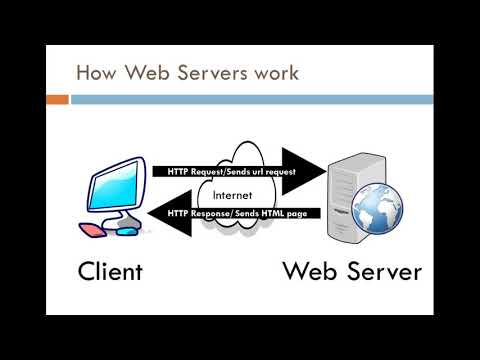 Whats the difference between Web and App Server