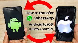 How To Backup And Transfer Whatsapp Data From IPhone To Android | Dr Fone
