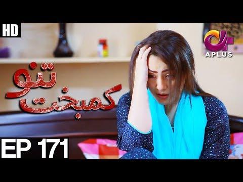 Kambakht Tanno - Episode 171 - A Plus ᴴᴰ Drama