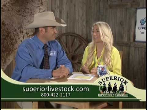 Superior Sunrise July 1, 2016 Featuring Auctioneer Charly Cummings