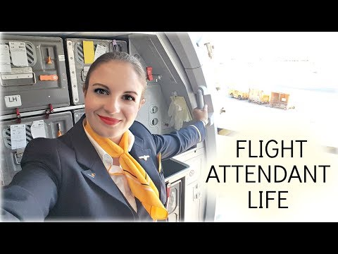 3 Day Trip to New York and New Jersey I Flight Attendant Life I Vlog 28