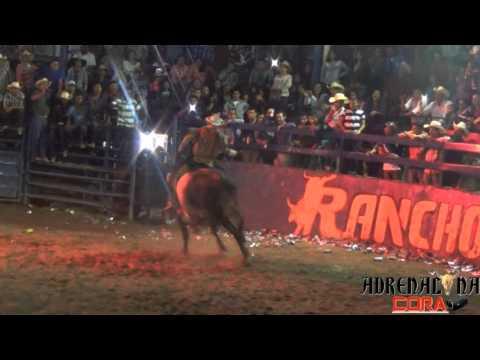 """¡CAMPEON! Rancho de Aguas 2015 """"El Rey del Pop"""" Rancho Los Pelones"""