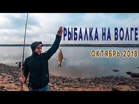 РЫБАЛКА в Ярославской области | Мышкино Подворье | Плотва, Подлещик. Фидер из спиннинга